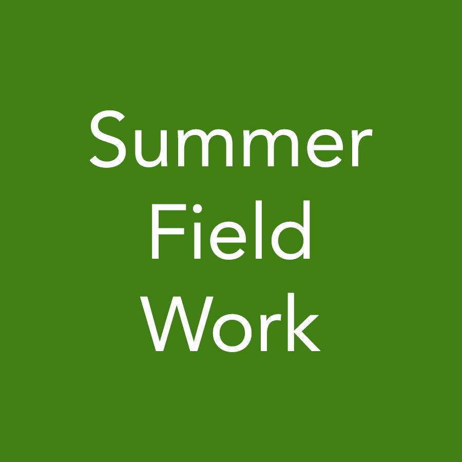 logo_summerfieldwork