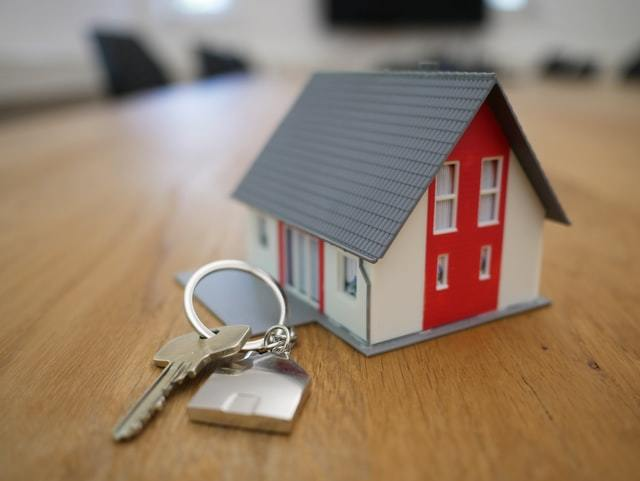 Job Idea : Land and property valuer and auctioneer (3)