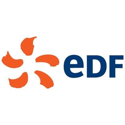 Organisation Logo (EDF)