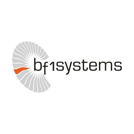 Company Logo (bf1 systems)