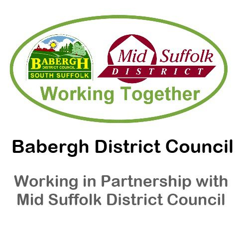 Organisation Logo (Babergh District Council)