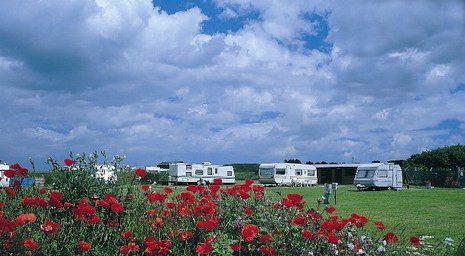 Company Image (Blue Sky Leisure: Caravan Park)