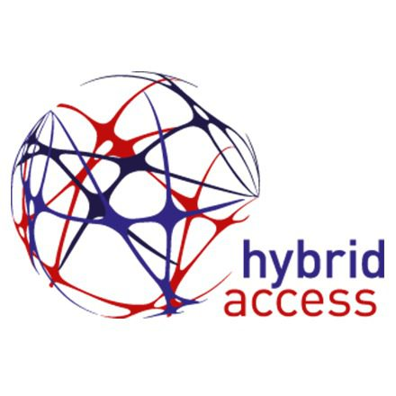 Company Logo (Hybrid Access)