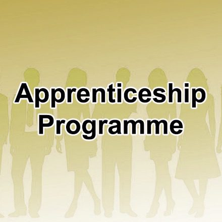 Site Image (Apprenticeship Programme Tag)