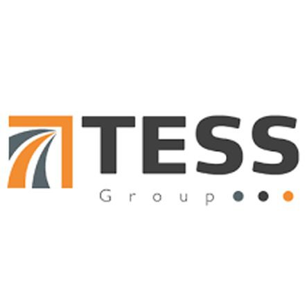 Company Logo (The Tess Group)