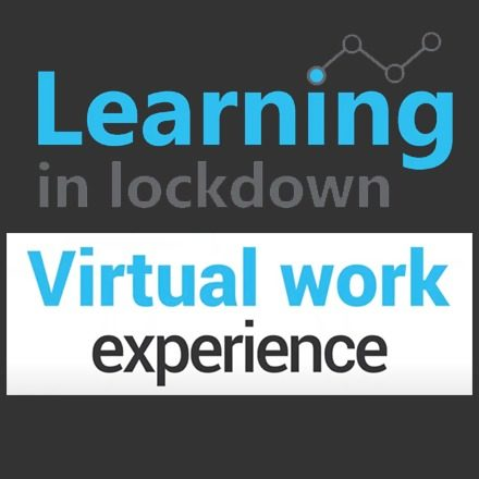 Post image (Scape Group: Virtual Work Experience 2020)