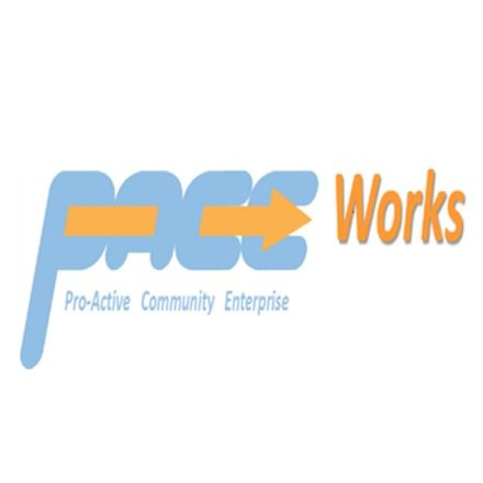 organisation Logo (PACE Works)