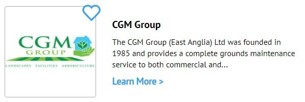 Cgm Group