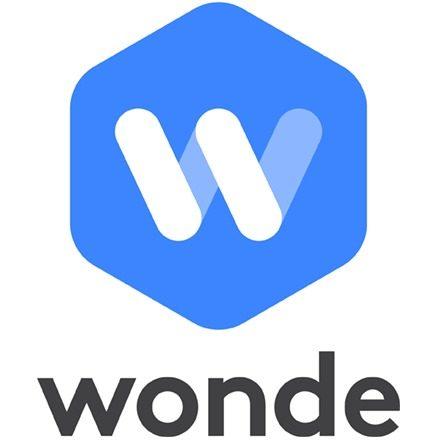 Company Logo (Wonde)