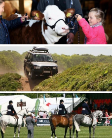 Organisation Image (Suffolk Agricultural Association: Cows, Horses, Vehicles, Children & Adults, Events)
