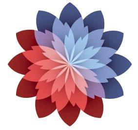 Organisation Image (WS Training Logo)