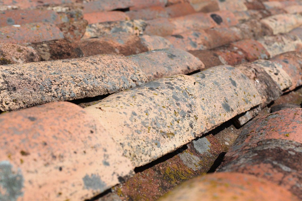 Roof Slater And Tiler