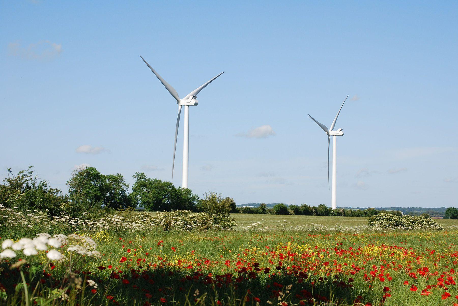 Renewable (Sector Header: Wind Turbines)