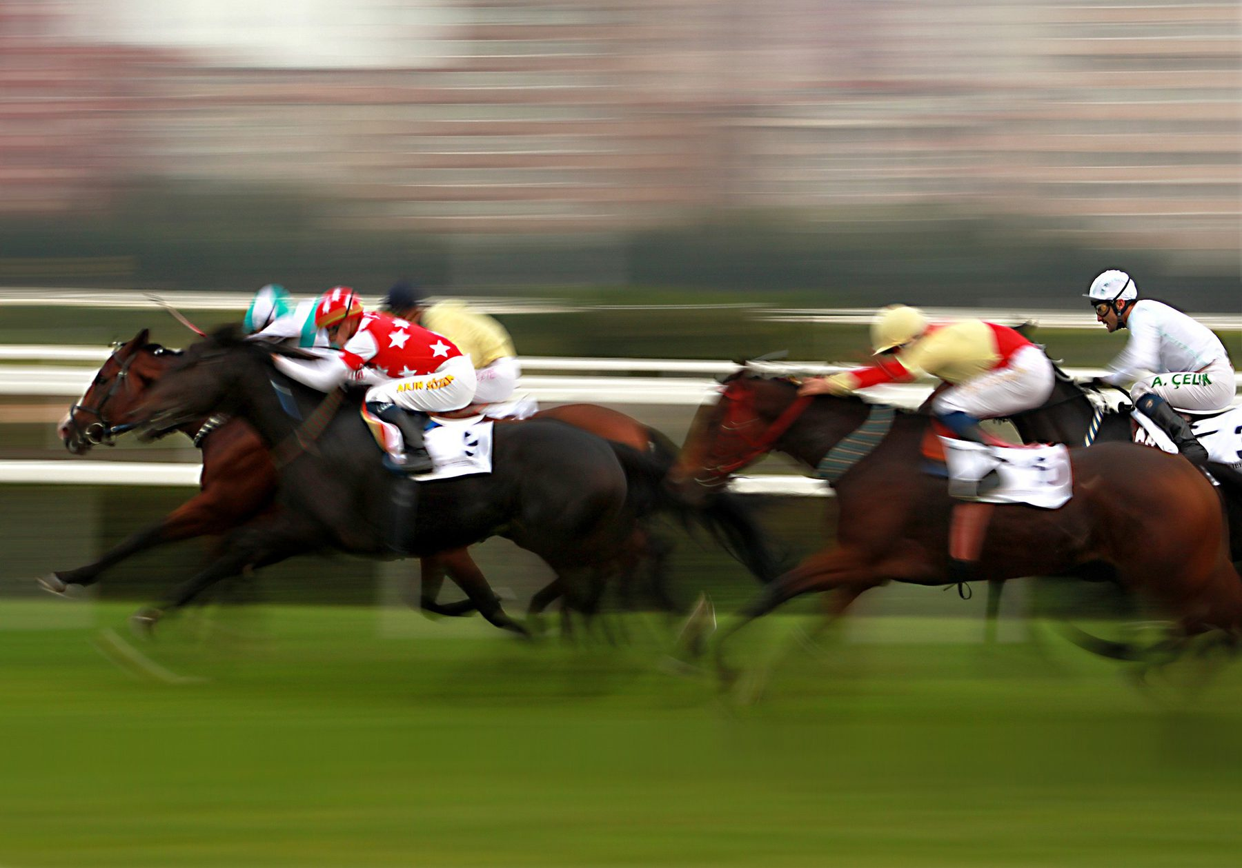 Horse Racing  (Sector Header: Horse Racing)