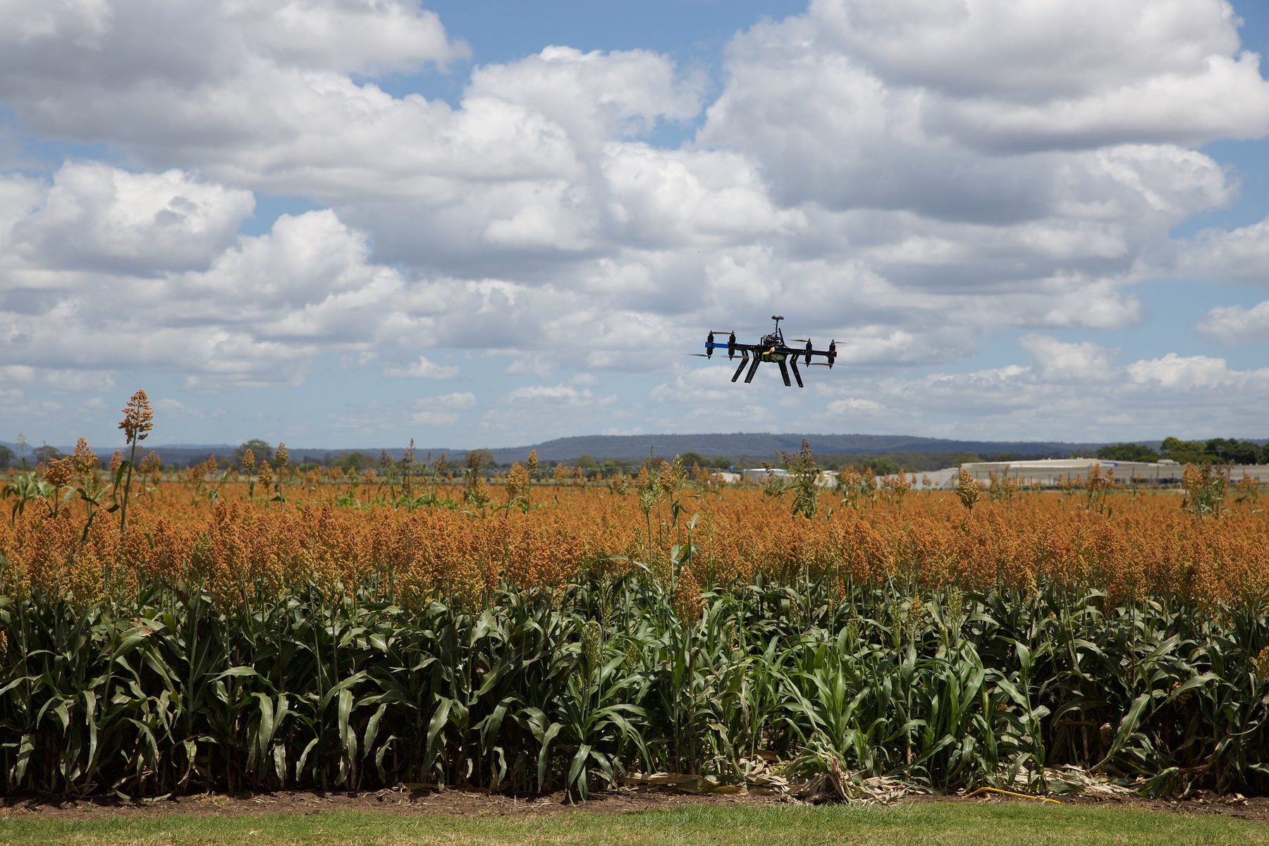Site Image (Drone, Field, Agri Tech, Agriculture)