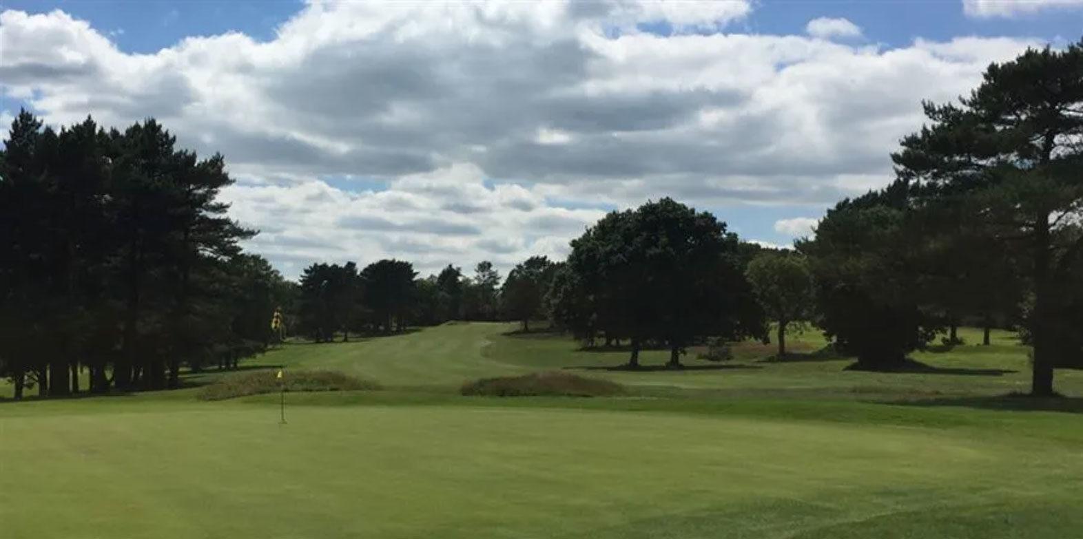 Organisation Image (Collier Turf Care: Golf Turf)